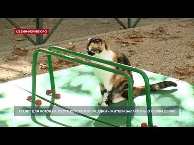 Туалет для котов на месте детской площадки – жители Балаклавы о дворе на улице Коммунаров