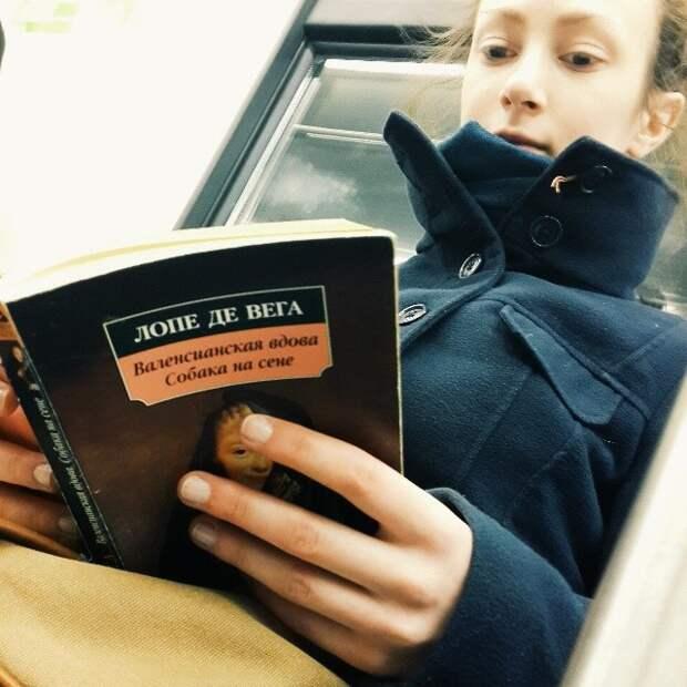 Вах-вах-вах, какая красота!  книги, метро, чтение