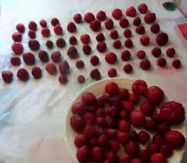 Как заморозить клубнику на зиму в холодильнике, с сахаром и без, сухая заморозка