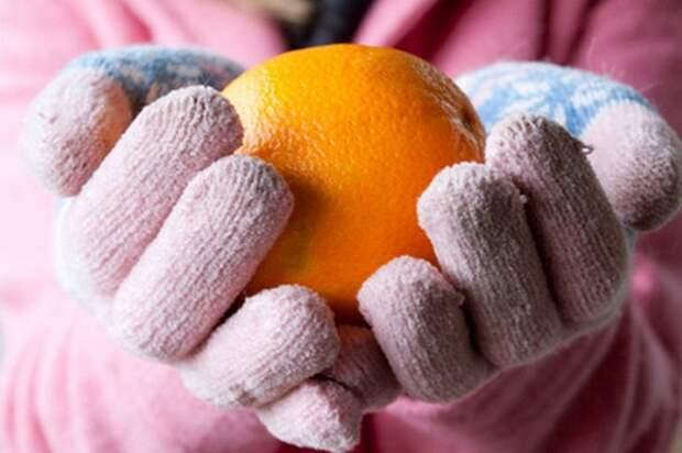 9 продуктов, которые помогут не замёрзнуть в мороз