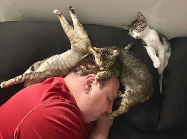 Люди, заснувшие в самых необычных позах