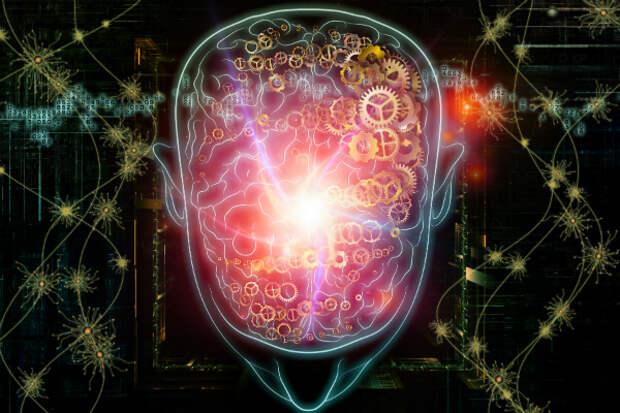 В мозге человека обнаружен уникальный ген