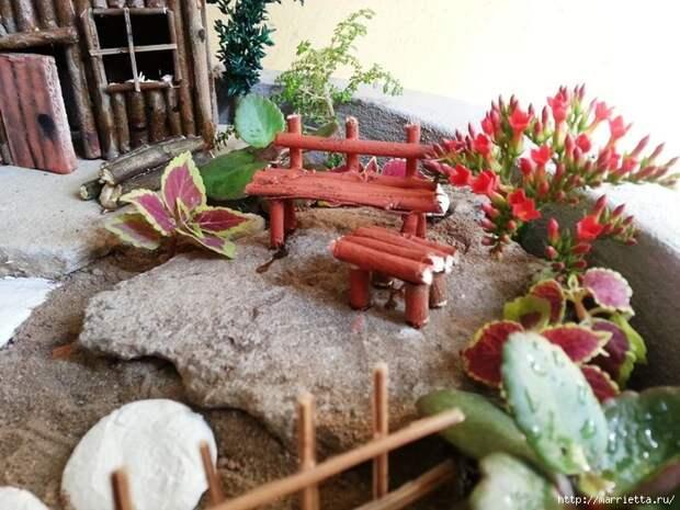 Миниатюрный сад своими руками (33) (700x525, 305Kb)