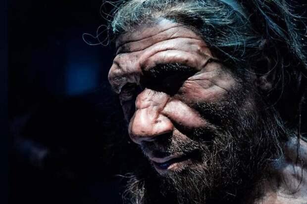 Родина предков: где и когда появился Homo sapiens