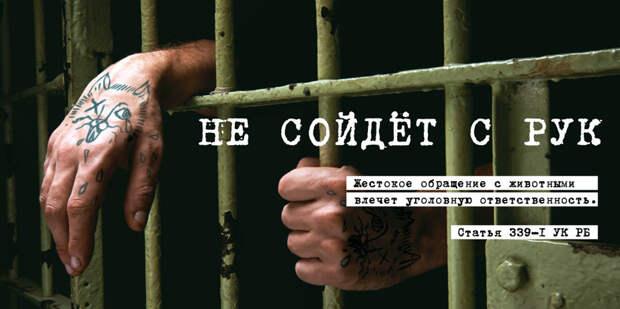 Наказание за жестокость