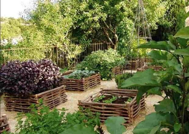 Сделайте из веток плетеную оградку для каждого огородика, удобно сажать, поливать и к каждому мини-огороду удобно подходить.