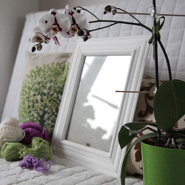 Интерьерная рамка из багета и потолочного плинтуса (Diy)