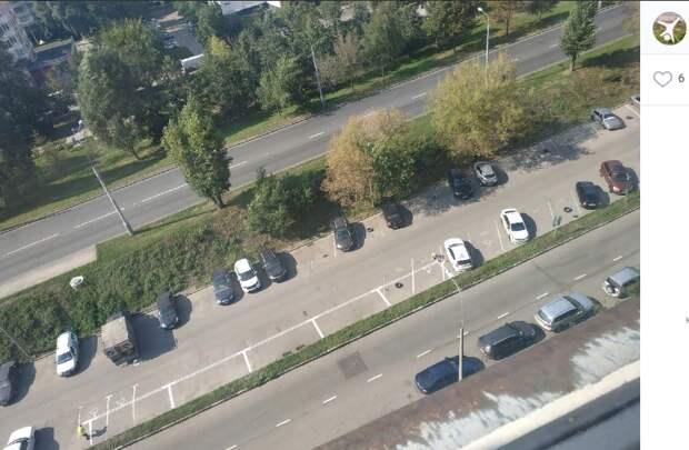 Елочную парковку на Донецкой улице заменили параллельной