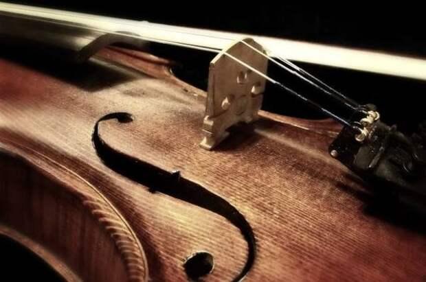 Мацуев встретился с челябинским скрипачом, на которого завели дело за шум