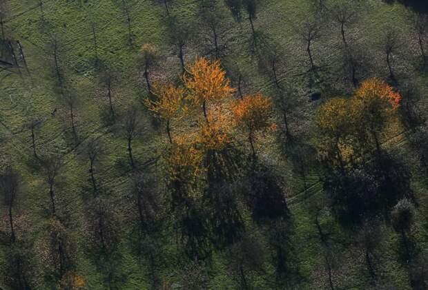 Захватывающая дух Германия осенью
