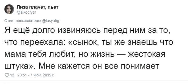 14. Тася Никитенко, животны, забавно, кот, кошка, люди, твиттер, юмор