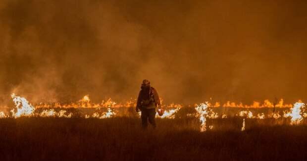 Зажег не по-детски: как украинский подросток сжег американский лес на 37 миллионов долларов