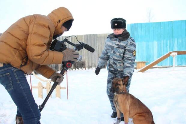 На службу в кинологическое подразделение УФСИН поступили бельгийские овчарки Малинуа, выведенные в Южной Корее путем клонирования