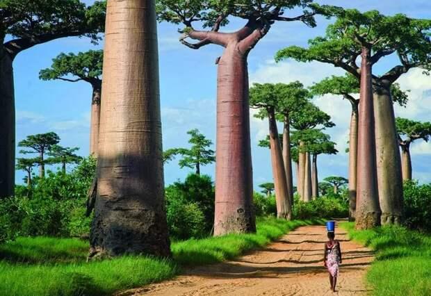 10 страшных историй с таинственных островов