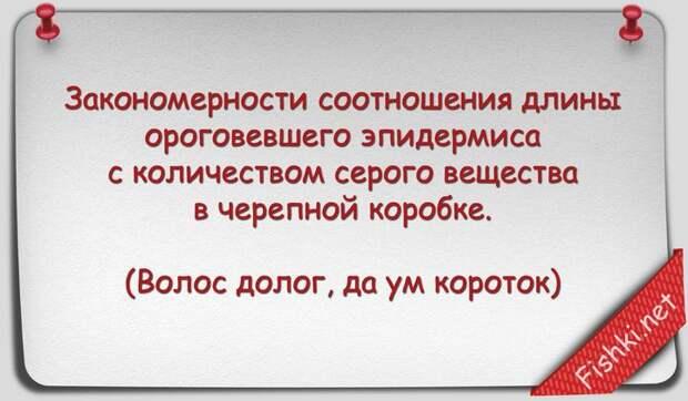 Русские пословицы и поговорки научным языком наука, поговорки, пословицы