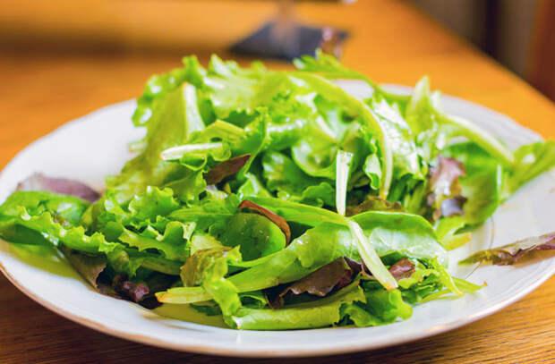 Как лучше всего хранить салатную зелень