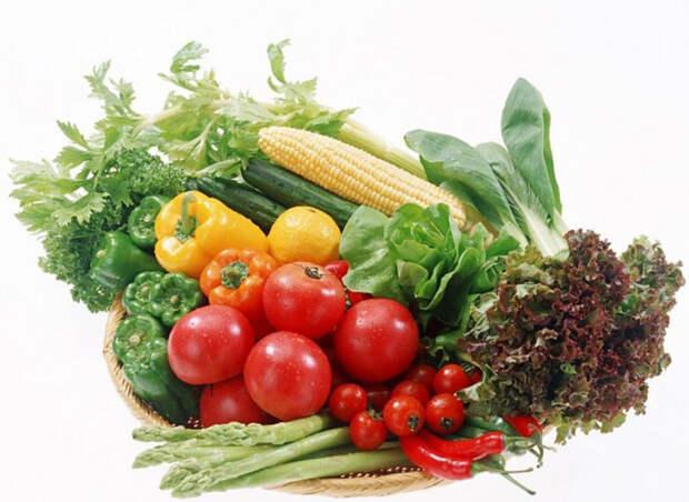 mifioede 15 Самые популярные мифы о здоровом питании и их опровержение
