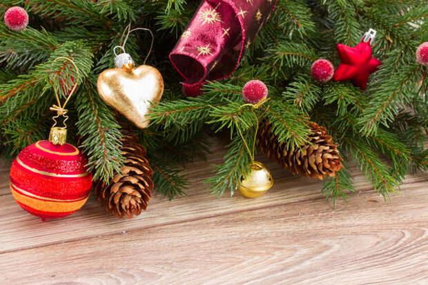 Зная, чем полезна хвоя, быть может, вы найдете елке после праздников подходящее применение