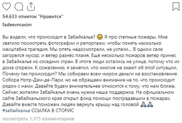Фадеева удивили россияне, помогающие Нотр-Дам-де-Пари, а не погорельцам Забайкалья