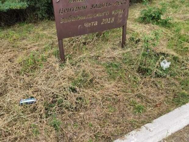 Парк в Чите постепенно становится свалкой мусора из-за отсутствия урн