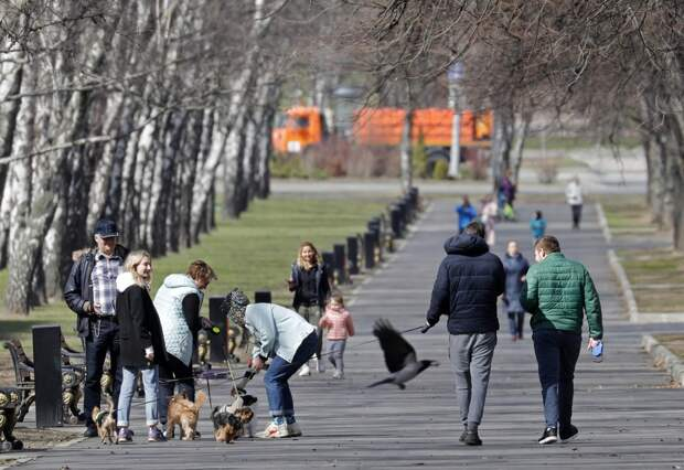 Названа дата наступления теплой весны в Москве