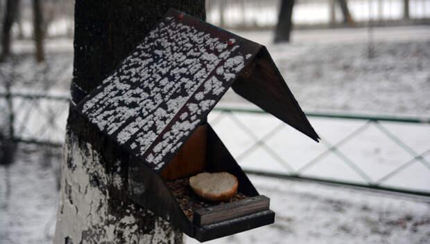 Облачно и до минус 5 градусов ожидается в Подольске во вторник