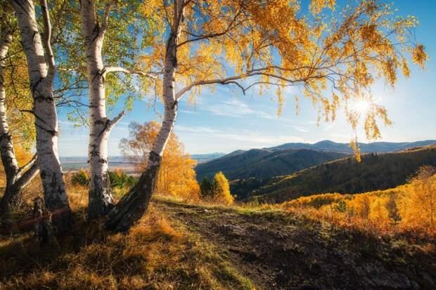 Лучшие фотографии от National Geographic октябре 2015