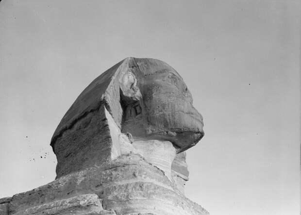 Раскопки Альфреда Моуда. Гиза. Сфинкс и пирамиды. Голова сфинкса (крупный план). 1934