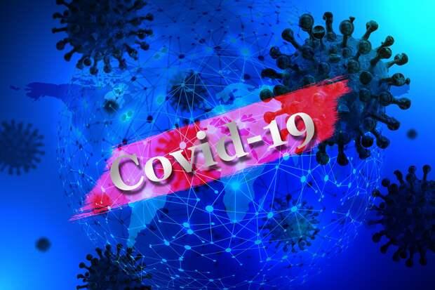 В правительстве Севастополя озвучили информацию о коронавирусе