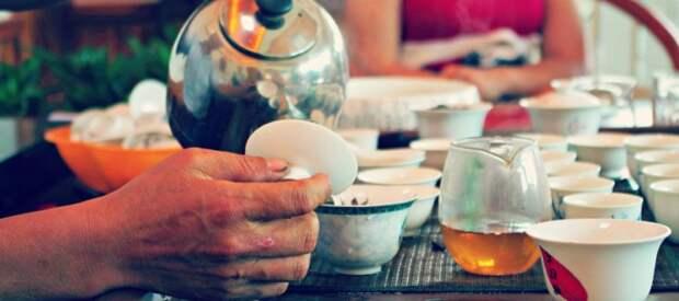 Легко и понятно: как правильно заваривать китайский чай