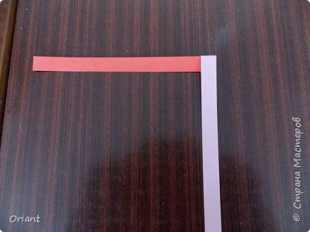 Мастер-класс Педагогический опыт Раннее развитие Бумагопластика Волшебные превращения бумажной ленточки Бумага фото 5