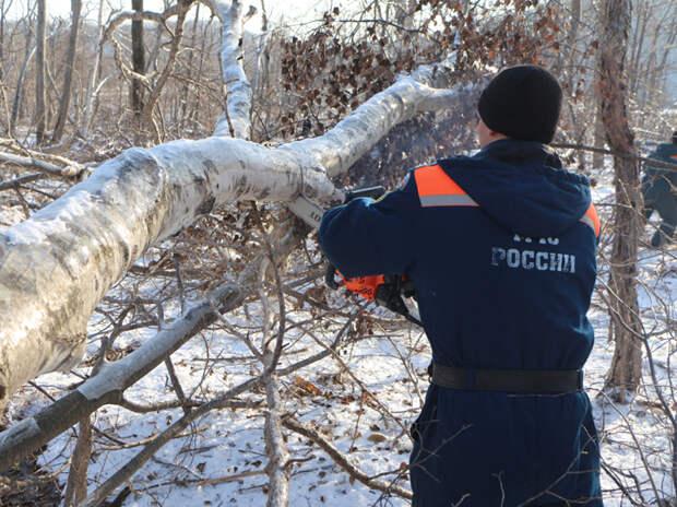 Во Владивостоке возникло запредельное недовольство властью