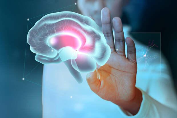 Названы разрушающие мозг продукты