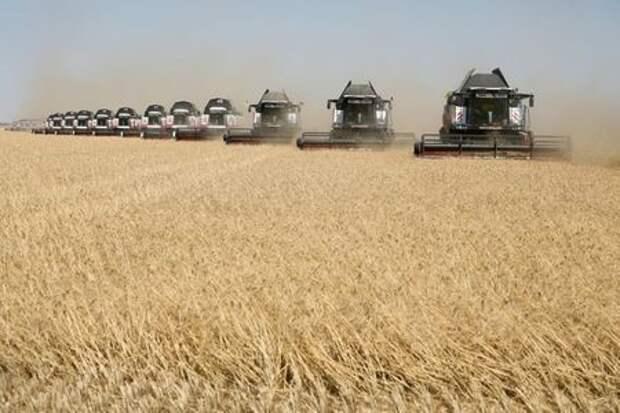 Комбайны убирают пшеницу в поле в Ставропольском крае, 7 июля 2020 года. REUTERS/Eduard Korniyenko