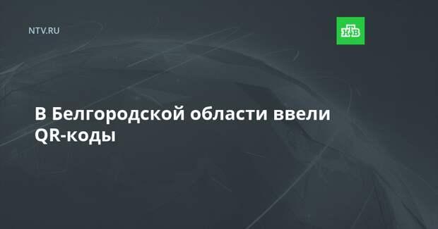 В Белгородской области ввели QR-коды