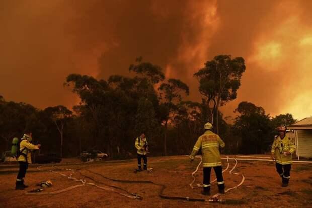 пожар в Австралии
