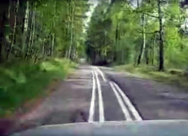 «Пьяная» разметка на дороге