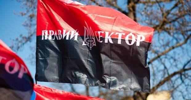 Флаг украинского «Правого сектора» разозлил граждан Бразилии и стал причиной столкновений