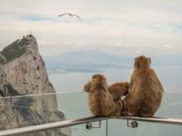 Гибралтар – идеальное место для путешествий в 2021-м году