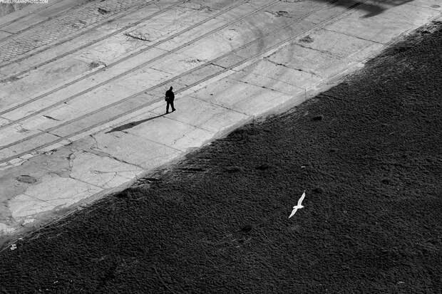 Чарующий минимализм в работах Павла Франика