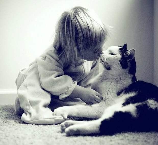 Они расставались всего на пару дней. Реакция кошки на ребёнка бесценна!