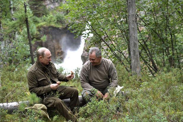 Путин вновь уединился в тайге с Шойгу