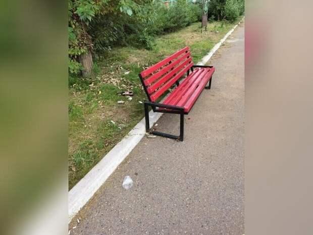 Парк МЖК зарастает мусором - здесь нет ни одной урны для мусора