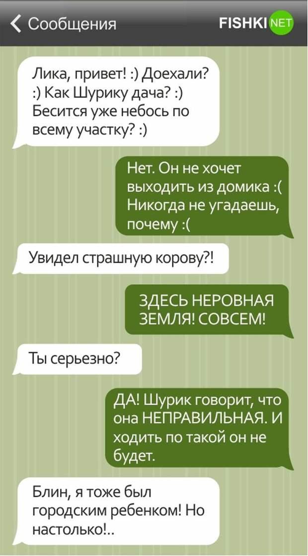 15 смешных СМС о дачниках дача, дачник, смс, юмор