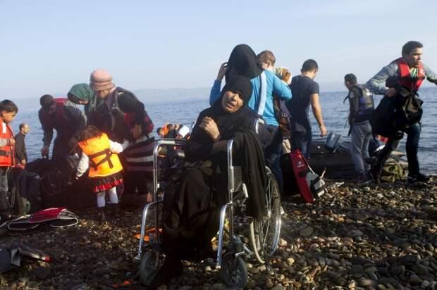 Беженцы и мигранты