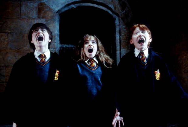 Назад в Хогвартс: герои Роулинг, которые точно были в твоей школе