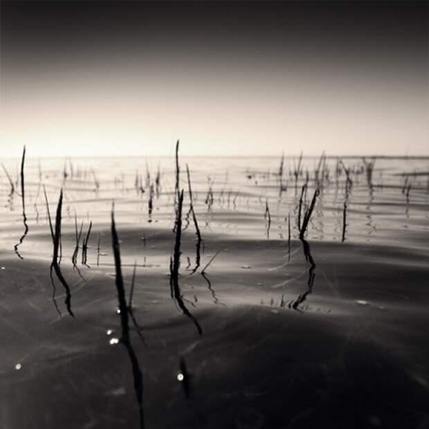 Черно-белое очарование в работах Denis Olivier
