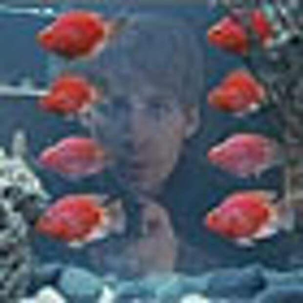 Техношок: дистанционно управляемые рыбы