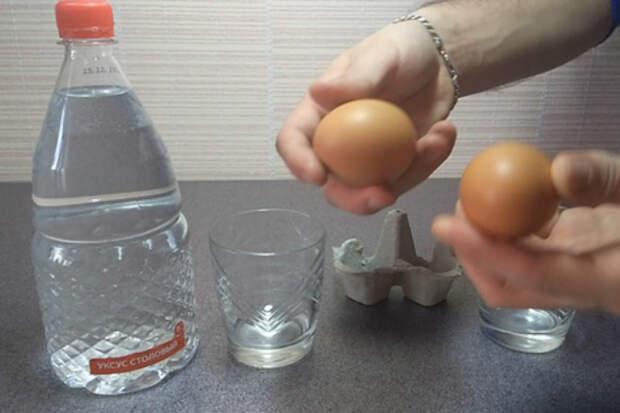 Что уксус может сделать с яйцом
