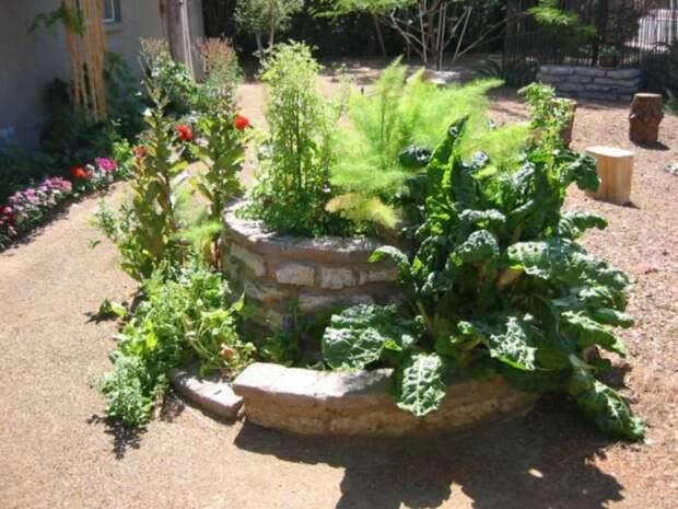 Спиральный сад из камней с использованием раствора для закрепления. /Фото: i.pinimg.com